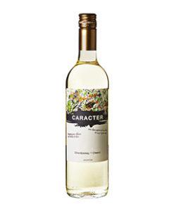 Bodegas Santa Ana Caracter Chardonnay Chenin Mendoza Argentinië