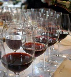 Wereld wijnproefdoos Carménère
